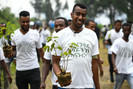 Etiópia planta mais de 350 milhões de árvores em 12 horas para ajudar a combater a crise climática