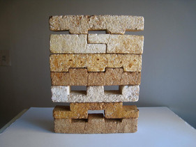 Designer americano cria tijolos de cogumelos que são mais fortes do que concreto