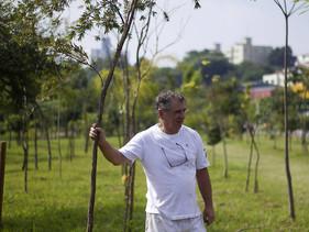 Administrador aposentado planta milhares de árvores na zona leste de São Paulo