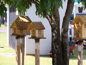 Projeto de lei Jardins de Mel: incentivo à criação de abelhas sem ferrão é aprovado em Cascavel