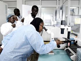 Cientistas do Senegal desenvolveram um kit de testes de US $ 1 para o COVID-19 e vão exportar aos mi