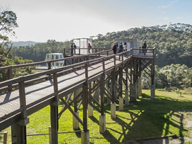 Acessível e sustentável, parque suspenso em meio a Mata Atlântica é inaugurado em SP