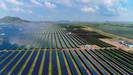 Índia se torna o segundo maior mercado de energia solar após instalação de parque com capacidade de