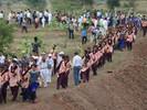 Na Índia, 1,5 milhão de voluntários plantaram 66 milhões de árvores em 12 horas, quebrando o Recorde