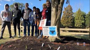 Adolescentes plantam 20 km de jardins para abelhas