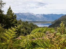 Chile estabelece 10 milhões de hectares de parques nacionais em movimento pró-conservação.