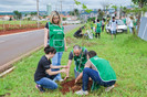 Plantio de árvores dá início a Trote Sustentável de Medicina em Jaú