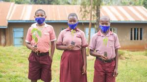 Projeto planta árvores em Uganda toda vez que um bebê nasce ou é adotado no País de Gales