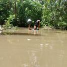 Professor percorre 30 Km e atravessa igarapé com água no pescoço para imprimir atividades de alunos