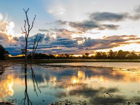 Brasil, Bolívia e Paraguai se unem em compromisso para proteger o Pantanal