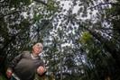 Guardião das araucárias dedica 20 anos a reflorestamento de grande área em meio a Curitiba