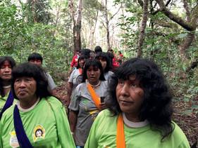 Mulheres indígenas ajudam a recompor matas ciliares em fazenda do Mato Grosso