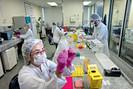 De engenheiros a estatísticos, Unicamp mobiliza batalhão de cientistas contra o coronavírus