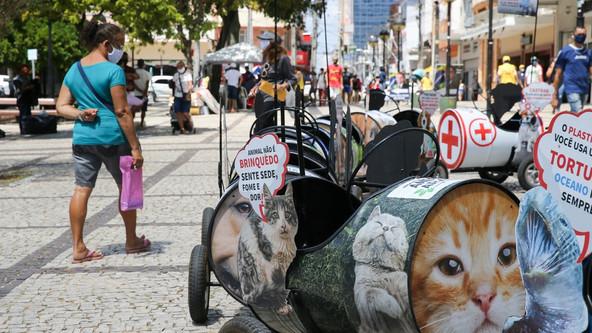 Com vagões informativos, projeto usa 'trenzinho' para conscientizar sobre abandono animal em Fortale