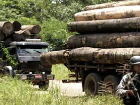 Governo brasileiro apóia tribo de índios que intitulam-se os 'Guardiões da Amazônia' em sua