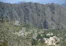 Paquistão irá plantar 10 bilhões de árvores para combater a mudança climática