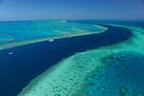 """Cientistas descobriram dezenas de novos corais e espécies na """"Grande Barreira de Corais"""" da Austráli"""