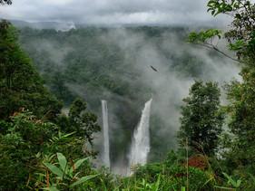 Com o apoio da Noruega, a Colômbia está adicionando 8 milhões de hectares a suas áreas protegidas pa