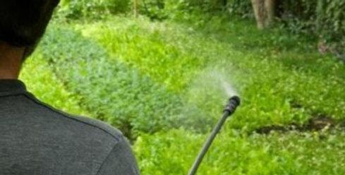 Compost Tea Spray (Single) Large Yard