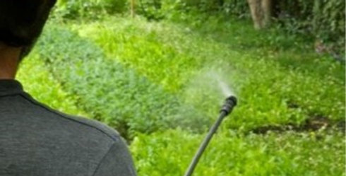 Liquid Compost Extract Applications