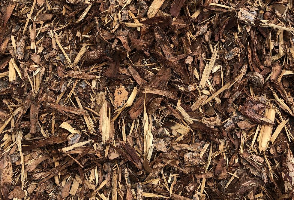 WHLS Premium Pine Mulch