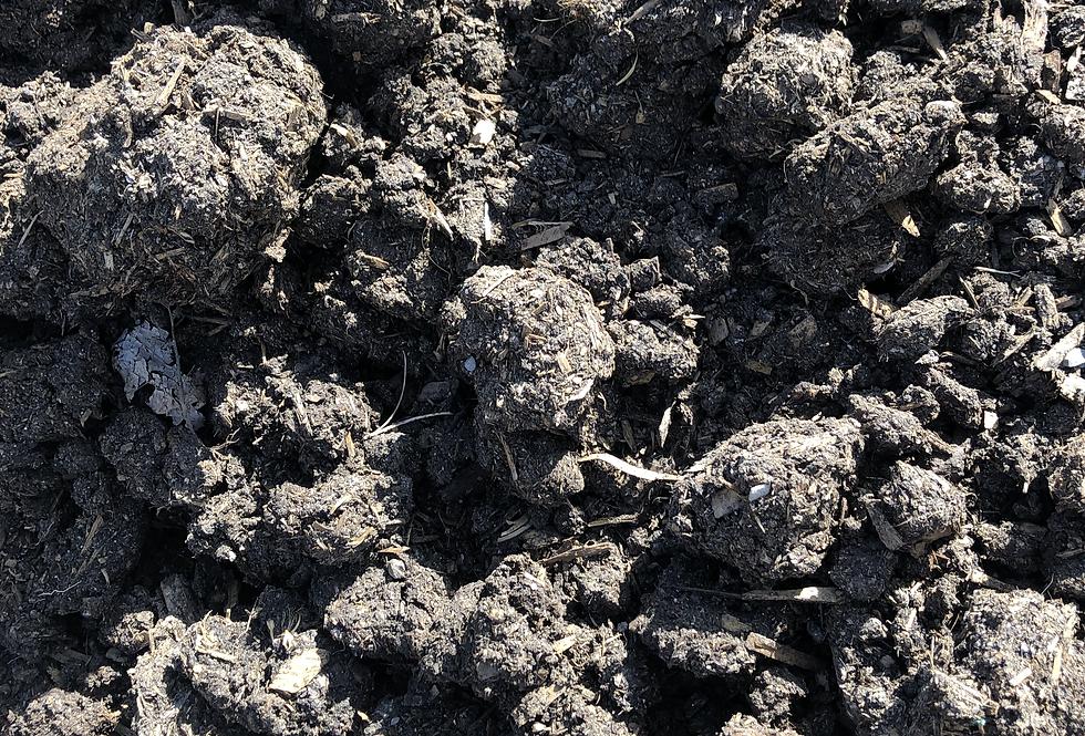 Premium Aged Compost