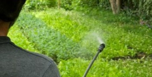 Compost Tea Spray (Oversize yard or Commercial)