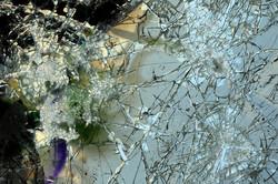 Araignée dans sa toile de verre