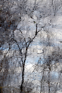 Reflet _glacé