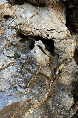 Origène préhistorique