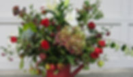 IMG_3657_edited_edited_edited_edited_edited.jpg