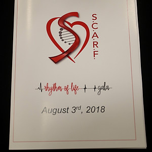 1st Annual Rhythm of Life Gala Album One
