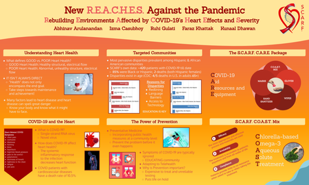 New R.E.A.C.H.E.S. Against the Pandemic