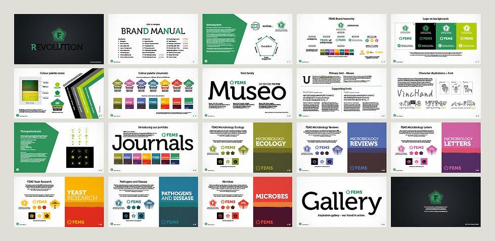 FEMS Brand Guidelines Plan.jpg
