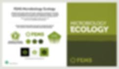 FEMS Brand Guidelines Detail.jpg