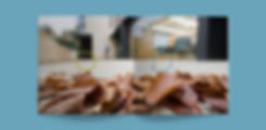 Bonavero-Brochure-Opening-Page.jpg