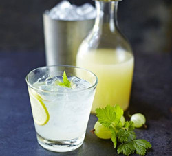 Gooseberry & Mint Lemonade Gooseberry & Mint Lemonade