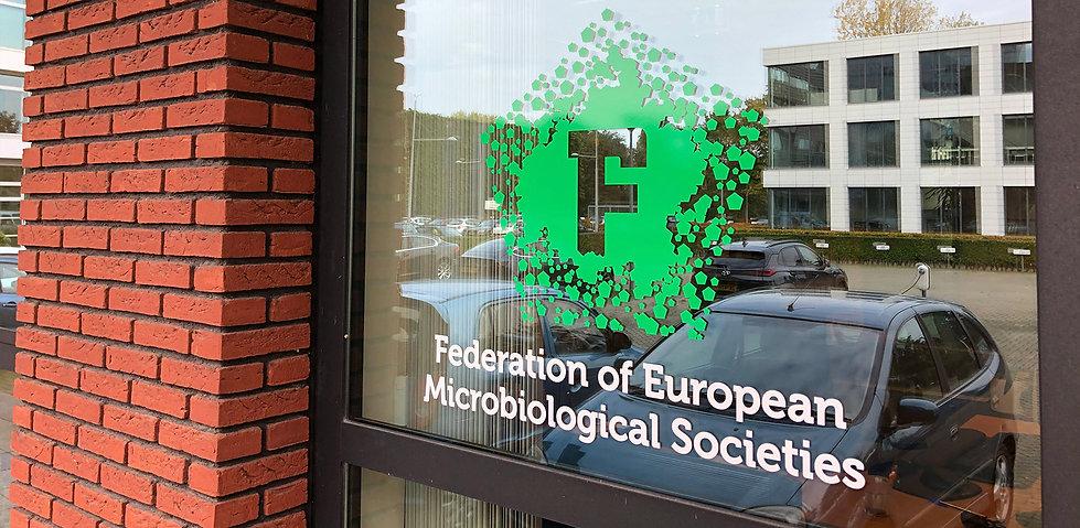 FEMS Brand Window Cling.jpg