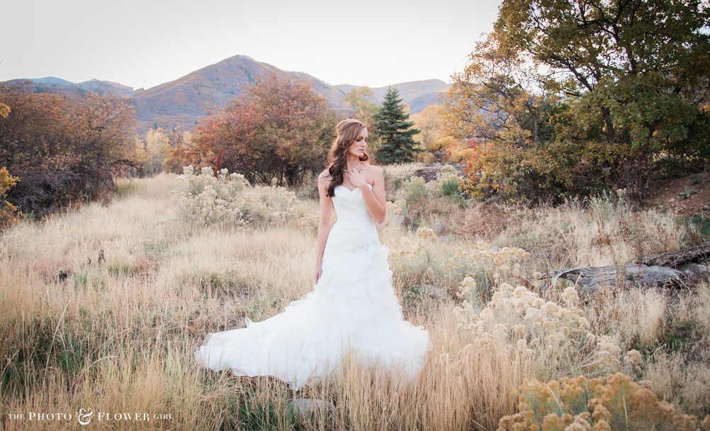 Washington D.C. wedding photographer