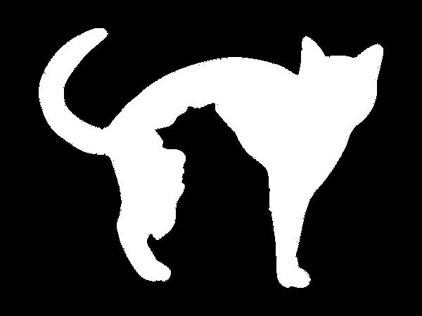 SBF_Logo_White.png
