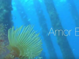 """Filmet """"Amor Blau"""""""