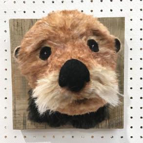 Sea otter Bighead