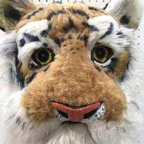 Tiger Bighead