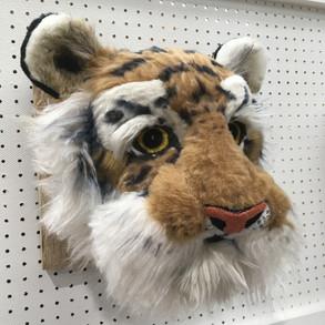 Tiger Bighead Side