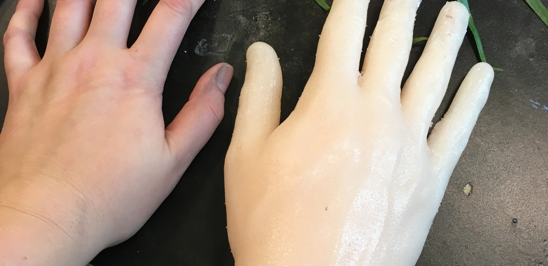 Cast of Actor's Hand in Dragonskin