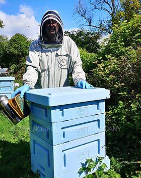 Honey Paw Hive Stewart.jpg