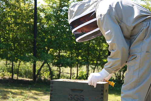 Beekeeping Experience Day Group (Non-Beekeeper)