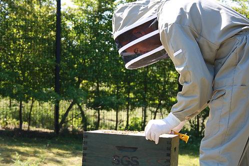 Beekeeping Experience Day Individual (Non-Beekeeper)