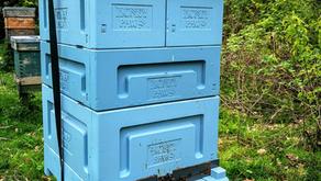 Honey Paw Poly Langstroth Hive Setup