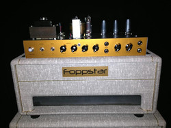 Foppstar Fawn Amp Front